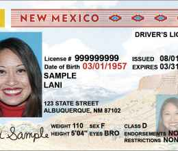 how to fix drivers license